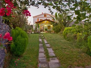 Villa Charis, Beach, Pool & jacuzzi! - Panormo vacation rentals
