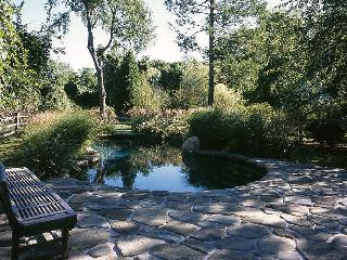 PRIVATE HISTORICAL HOME AND GUEST HOUSE - Bridgehampton vacation rentals