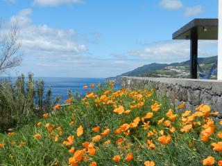 B&B in a nature's paradise (AL) - Povoação vacation rentals