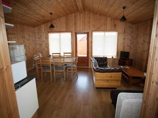 Beautiful 2 bedroom House in Blonduos - Blonduos vacation rentals