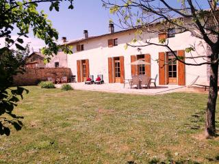 Perfect 3 bedroom Farmhouse Barn in Chef-Boutonne - Chef-Boutonne vacation rentals