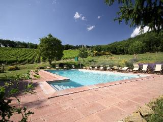 Nice Farmhouse Barn with Internet Access and Shared Outdoor Pool - Pontassieve vacation rentals