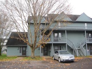 Golf/Cycle/Ski Condo - Chautauqua Allegheny vacation rentals
