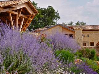 Perfect Uzes Gite rental with Dishwasher - Uzes vacation rentals