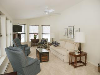 Vacation Apartment Close to Caberfae Ski & Golf - Brethren vacation rentals