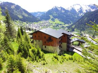 1 bedroom apartment in Chatel - Chatel vacation rentals