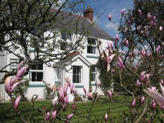 Wonderful Cottage with Television and Microwave - Llanteg vacation rentals