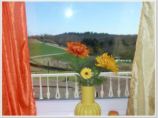2 bedroom Condo with Internet Access in Cochem - Cochem vacation rentals