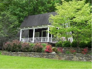 Silver Creek Cottage - Bryson City vacation rentals