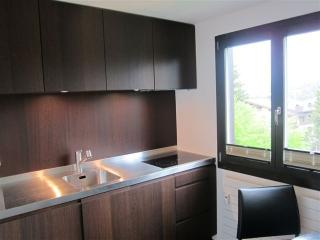 Beautiful Klosters Platz Studio rental with Dishwasher - Klosters Platz vacation rentals