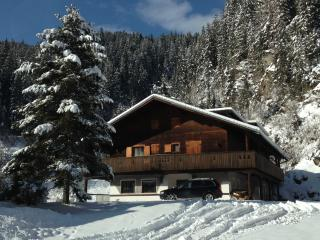 LE CHALET  D'OR - Comelico Superiore vacation rentals