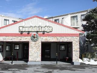 2BR Slopeside, Ski in/ Ski Out, Great Ski Get Away - West Virginia vacation rentals