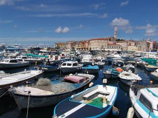 Charming 3 bedroom House in Rovinj with Internet Access - Rovinj vacation rentals