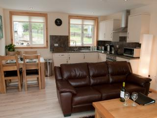 Perfect Condo with Internet Access and Garden - Ardnamurchan Peninsula vacation rentals