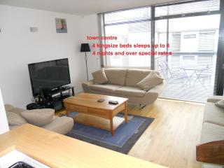 quiet duplex centre of killarney town - Killarney vacation rentals