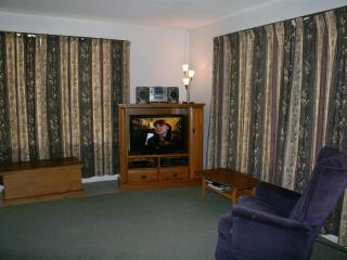 Comfortable Townhouse with Parking and Balcony - Hanmer Springs vacation rentals