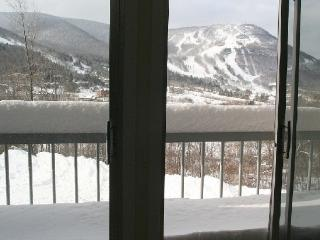 The Finest View Of Hunter Mountain In The World - Catskills vacation rentals