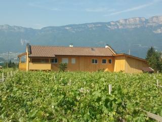 Nice 1 bedroom Apartment in Bolzano - Bolzano vacation rentals