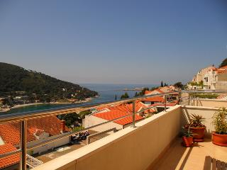Apt Robbie-Lapad with sea view - Dubrovnik vacation rentals
