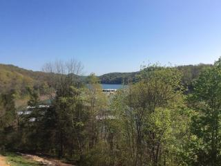 Center Hill Lake House - Silver Point vacation rentals