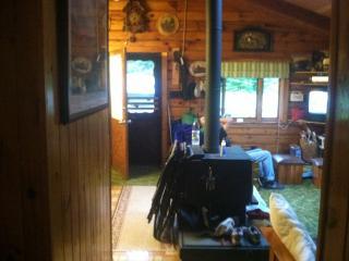 Quiet getaway, cabin in the woods - Davenport vacation rentals