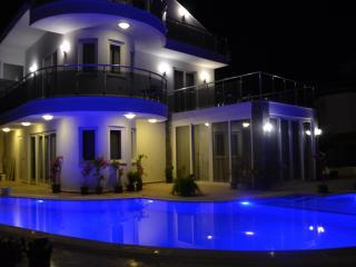 DalyanDream private pool free wifi free aircon - Dalyan vacation rentals