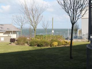 Perfect 2 bedroom Condo in Wexford - Wexford vacation rentals