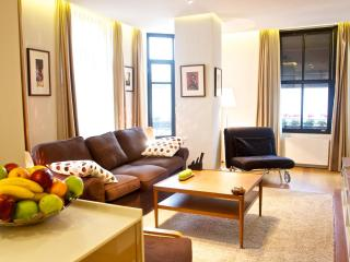 Large 2-Bedroom Apartment w reception & elevator! - Istanbul vacation rentals