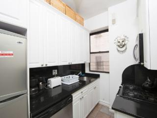 Fully Furnished, Newly Renovated 2 Bedroom Condo - Manhattan vacation rentals