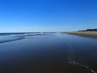 OCEANFRONT!   North End With Fabulous Ocean View - Hampton vacation rentals