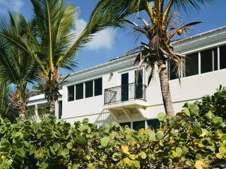 NEW TO VILLA MARKET WALK TO CRUZ BAY. WATERFRONT. - Cruz Bay vacation rentals