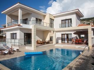 Koumasia Dream Luxury Villa - Peyia vacation rentals