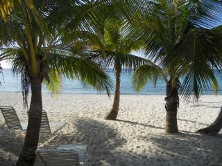 Direct Beachfront Condo,quiet,with pool and tennis - George Town vacation rentals
