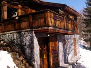 Ski chalet Sejn - Kopaonik vacation rentals