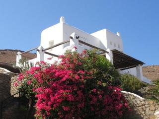 Villa Kappas   Breathtaking View to the Aegen Sea! - Mykonos vacation rentals