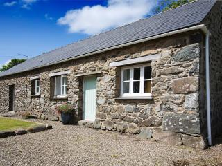 Perfect Cottage with Internet Access and Television - Saint Davids vacation rentals