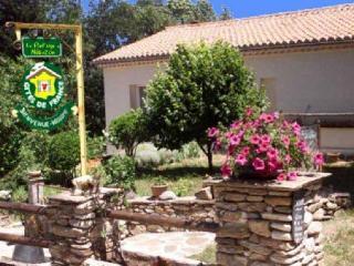 """GRANDE MAISON INDEPENDANTE """"lo NéBUZON"""" - St Gervais sur Mare vacation rentals"""