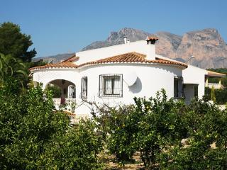Finca Buena Vista - La Nucia vacation rentals