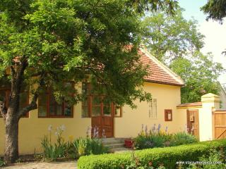 Charming Farmhouse Barn with Internet Access and High Chair - Stara Moravica vacation rentals