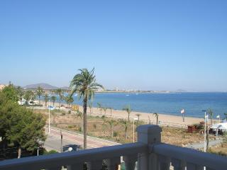 Lovely Beach Front Apartment - Playa Paraiso vacation rentals