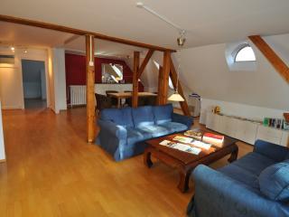 Zurich Penthouse Apartment - Zurich vacation rentals
