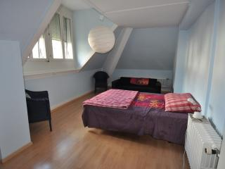 2 bedroom Apartment with Internet Access in Zurich - Zurich vacation rentals