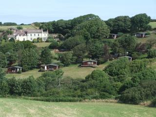 Beautiful Lodge with Internet Access and Garden - Broad Haven vacation rentals