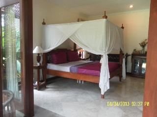 Luxury Bedroom Pool Sanur, fibre internet 10mps - Sanur vacation rentals