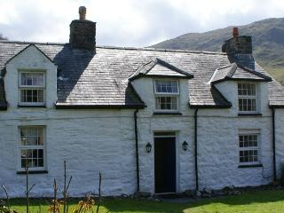 Beautiful Cottage with Television and DVD Player - Abergynolwyn vacation rentals