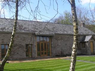 Baddegai Holiday Cottage - Brecon vacation rentals