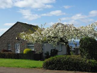 Comfortable Bungalow with Internet Access and Cleaning Service - Newport-on-Tay vacation rentals