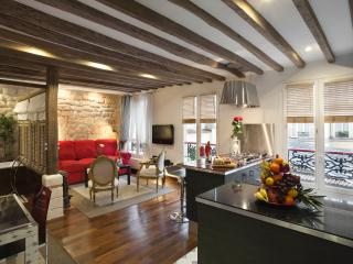 **** ON THE CANAL ! - Paris vacation rentals