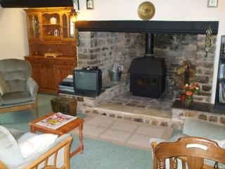 Beautiful Cottage with Internet Access and Satellite Or Cable TV - Langtree vacation rentals