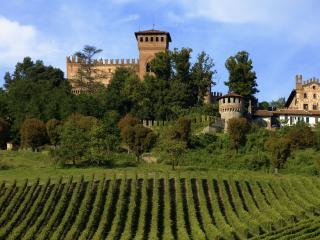 Charming 8 bedroom Castle in Gabiano with Internet Access - Gabiano vacation rentals